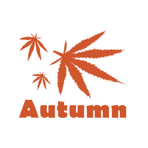 Autumn funny weed t-shirt