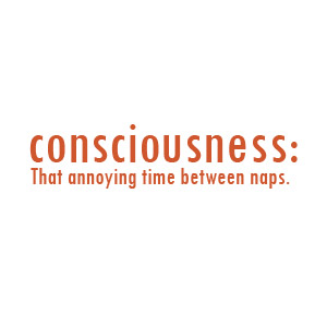 Consciousness - that annoying time between naps t-shirt