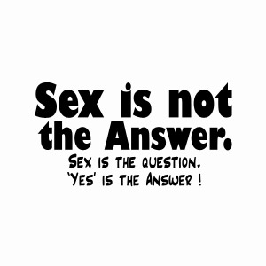 Funny dirty teeshirt, Sex is not the answer, it's the question